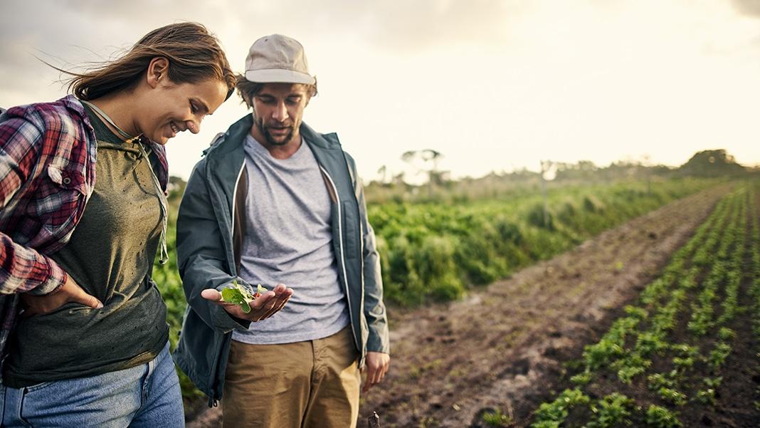 Arbeiten in der Landwirtschaft