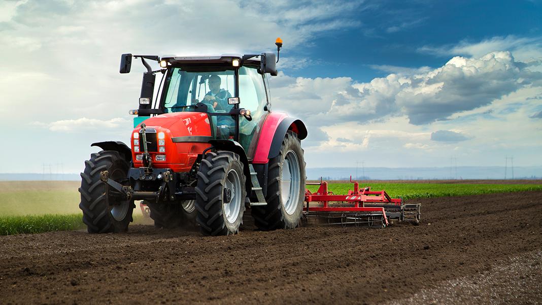 Landwirt / Landwirtin